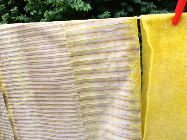 left, cotton woven shibori with various mordants, right, wool  with alum mordant. dyed with broom