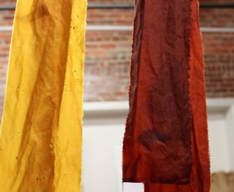fermented buckthorn bark dye, photo by Kimberly Coyne