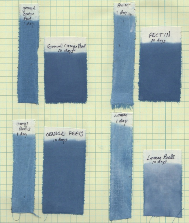 Natural dye experiments and results a blog by catharine ellis samples dyed in the vat 1 day after making the vat and 9 days later reduction of the indigo vat is sometimes not complete for several days publicscrutiny Image collections