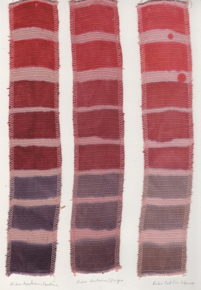 madder comparison cotton
