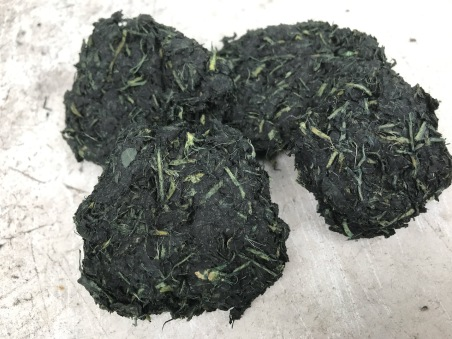 balls made from woad leaves (isatis tinctoria)